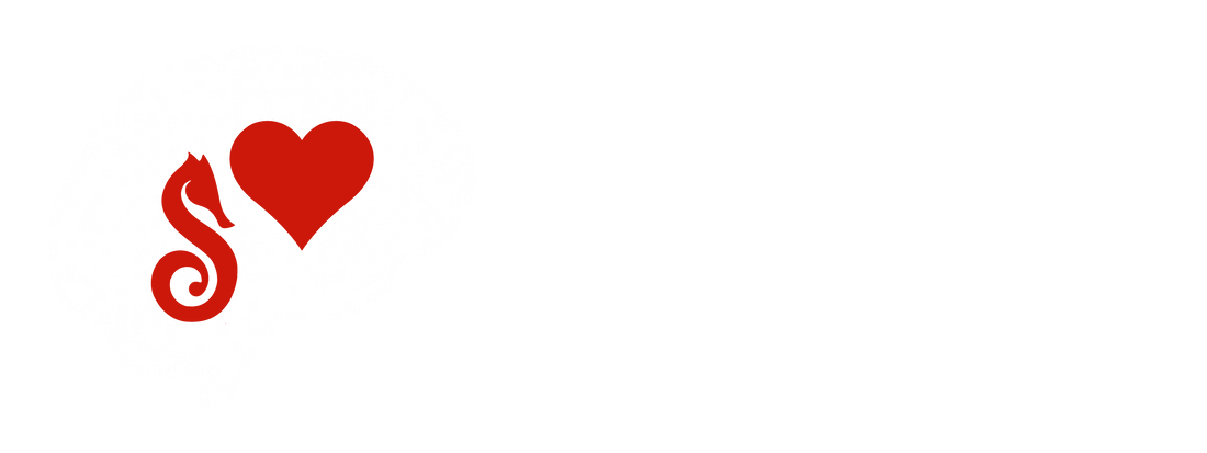 Cerveau Coaching et Performance